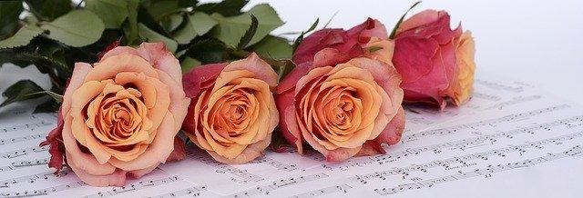 Kilka róż leży na papierze nutowym